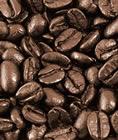 Nicaraguan Coffee Beans 6 kilo Bulk Option